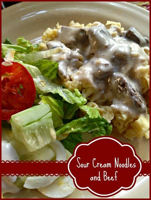 Sour cream Noodles and Beef