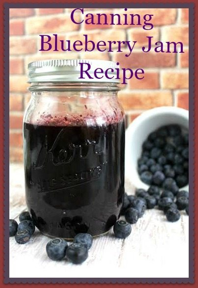 Canning Blueberry Jam Recipe