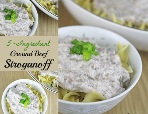 10 Fast and Easy Dinner Recipes for Busy Families-5 Ingredient Ground Beef Straganoff