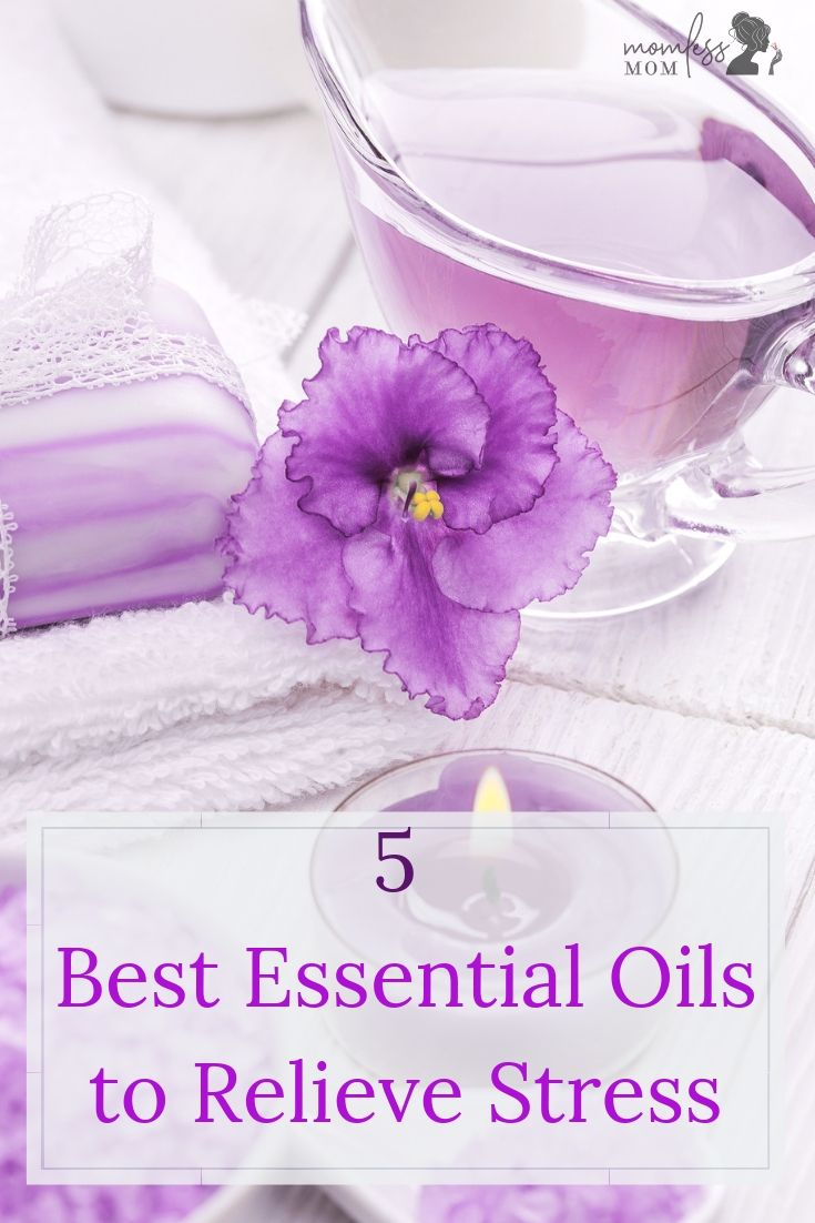 If you\'re looking for the best essential oils to relieve stress, look no further than these great options. You\'ll fall in love with the scent and calmness that the use of essential oils can bring! #essentialoils #healthyliving #selfcare